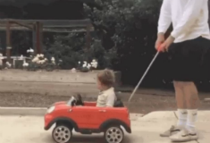 7 car gifs that will make you smile