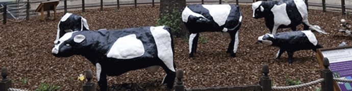 Milton Keynes Concrete Cows by Own Work